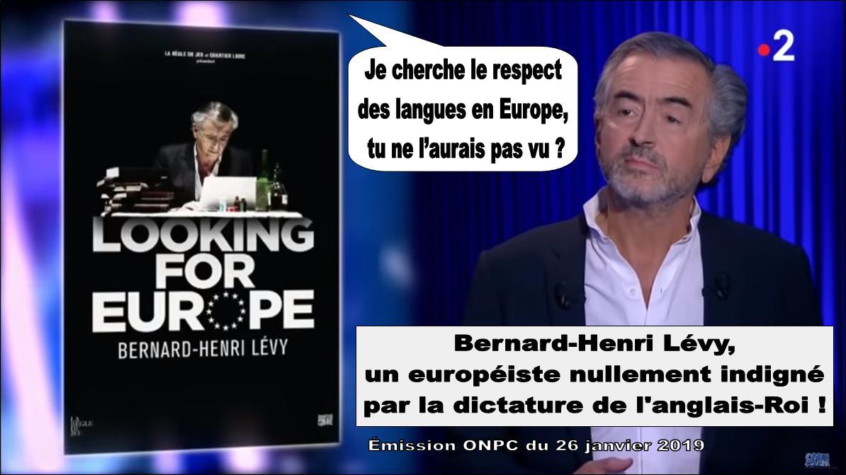 Bernard-Henri Lévy et la langue française