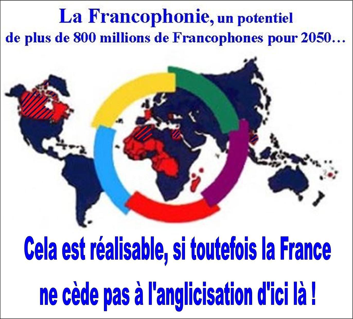 La Francophonie face à l'anglofolie de la France